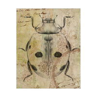 Victorian Ladybug Delta
