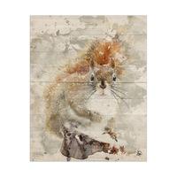 Winter Squirrel Delta