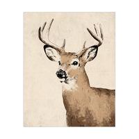 Rustic Deer May Be Lost