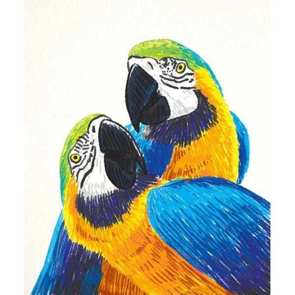 Tropical Parrot - Crayon
