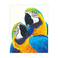 Tropical Parrot - Crayon