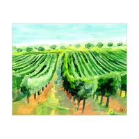 Old French Vineyard Omega