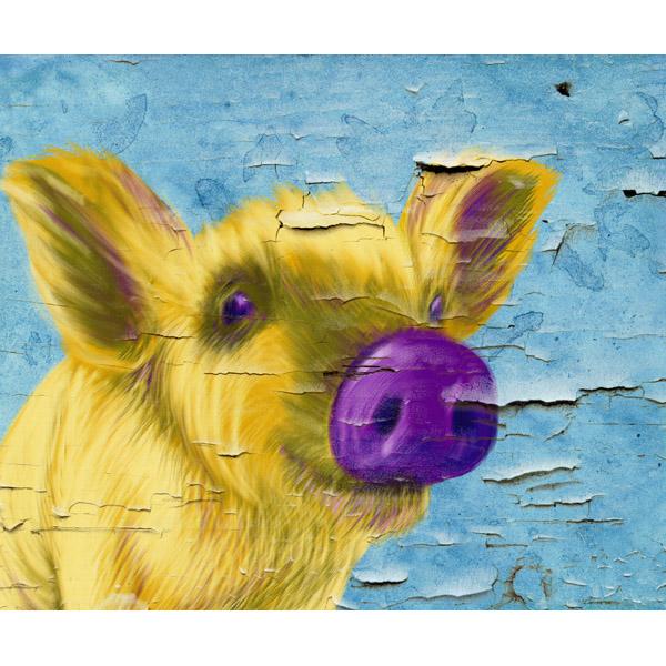 Purple Nosed Pig