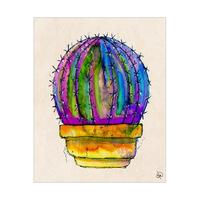 Cactus And Terra-Cotta Pot Omega