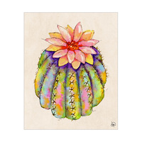 Lush Cactus Omega