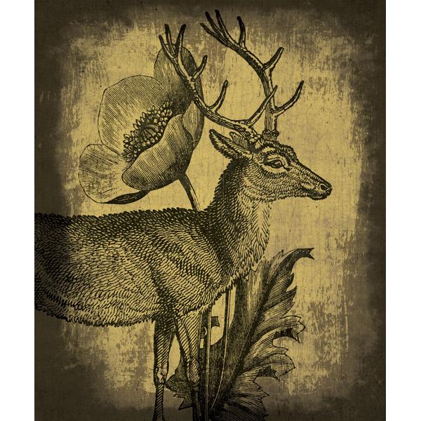 Woodland Prince - Yellow