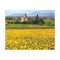 Provence Sunflowers