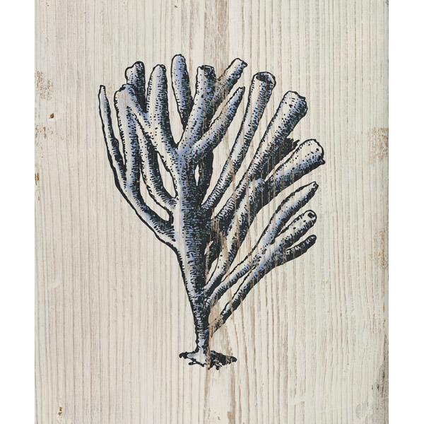 Rustic Coral Beige