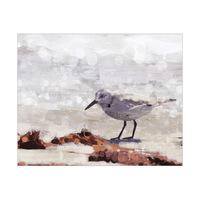 Sandpiper Painting
