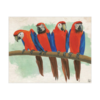Parrots On A Tree Branch